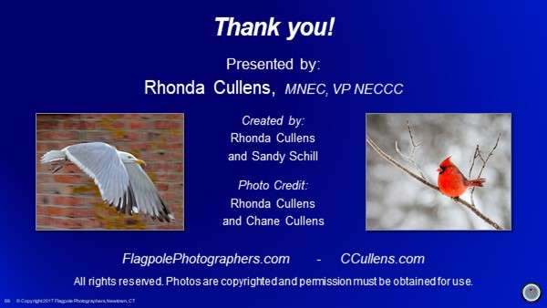 Rhonda Cullens - Birds for Shutter Buds 20180501 - 89