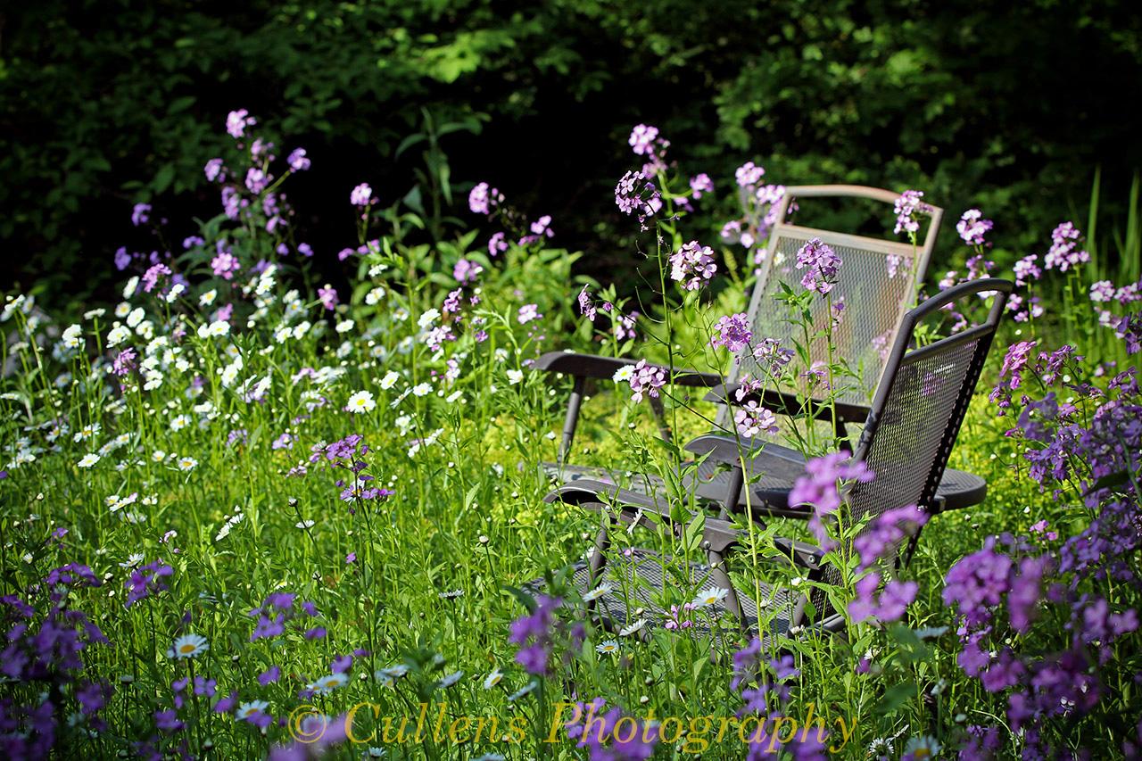 2015-06a-21-A-Relaxing-Garden-20150530-165623-60D-adj-2-12x18