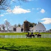 Horse Guard Trail Ride