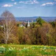 Spring from Castle Hill