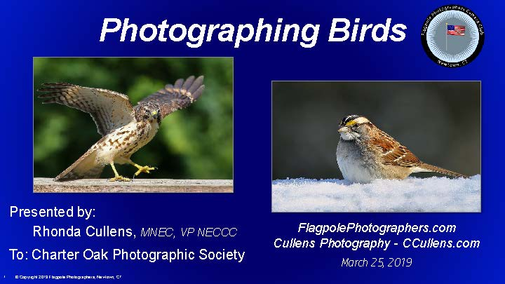 Rhonda presents Bird Photography at Charter Oaks
