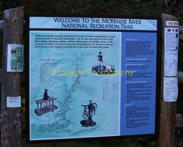 2016 McKenzie River Trail Run